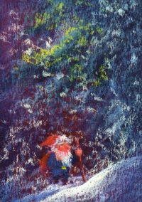 Gnome in Winterland